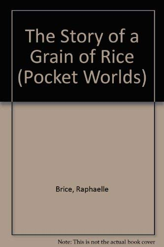 The Story of a Grain of Rice (Pocket Worlds): Brice, Raphaelle