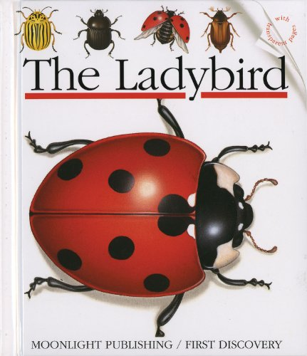 9781851030897: The Ladybird (First Discovery Series)