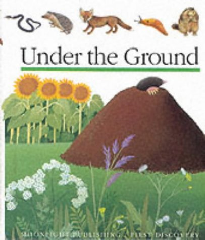 9781851031092: Under the Ground (First Discovery Series)