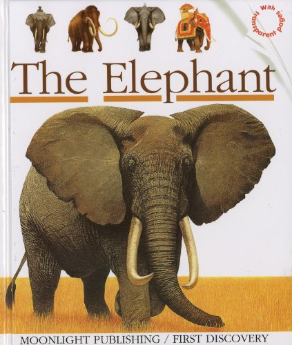 9781851031467: The Elephant (First Discoveries)