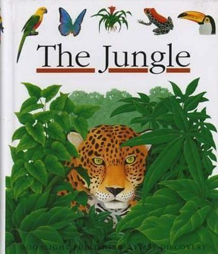 9781851031832: The Jungle (First Discovery S.)