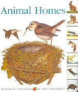 9781851033058: Animal Homes (My First Discoveries)