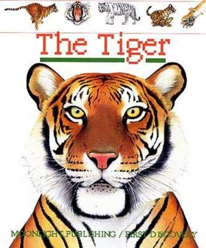 9781851033423: The Tiger (First Discovery)