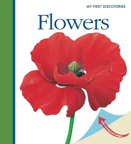 9781851033829: Flowers (First Discovery Series)