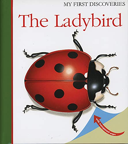 9781851033843: The Ladybird (My First Discoveries)