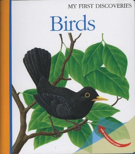 9781851033973: Birds (My First Discoveries)
