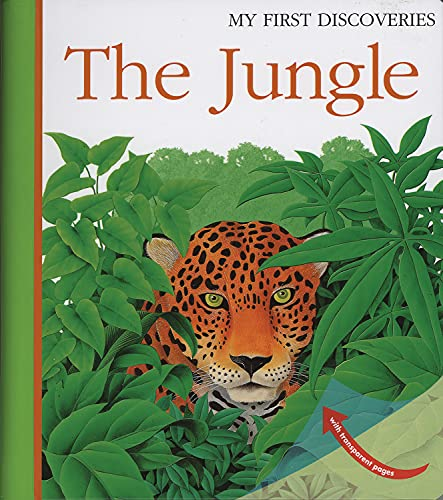 9781851033997: The Jungle (My First Discoveries)