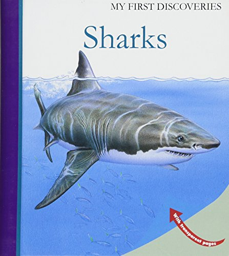 9781851034284: Sharks (My First Discoveries)