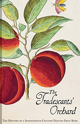 The Tradescants' Orchard: The Mystery of a Seventeenth-Century Painted Fruit Book: Juniper, ...