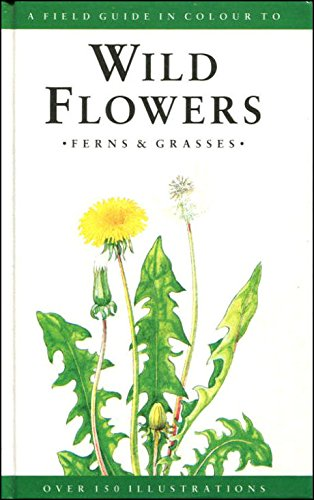 9781851521296: A Field Guide to Wild Flowers, Ferns and Grasses