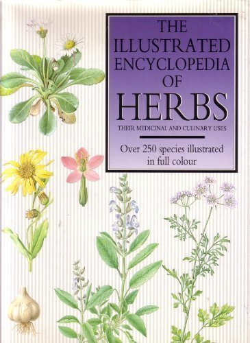 9781851521357: The Illustrated Encyclopedia of Herbs: Their Medicinal and Culinary Uses