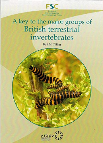 9781851531875: A Key to the Major Groups of British Terrestrial Invertebrates (Field Studies Council Publications)