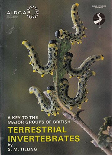 9781851531882: A Key to the Major Groups of British Terrestrial Invertebrates