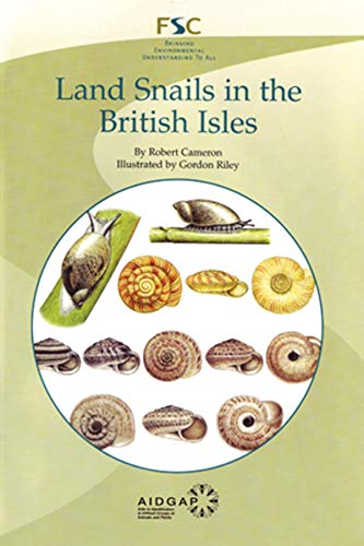 9781851538904: Land Snails in the British Isles