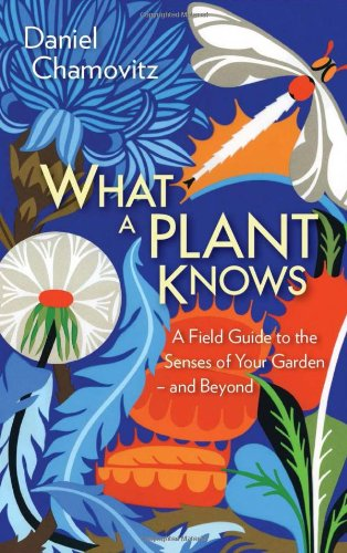 9781851689101: What a Plant Knows: A Field Guide to the Senses of Your Garden (and Beyond)