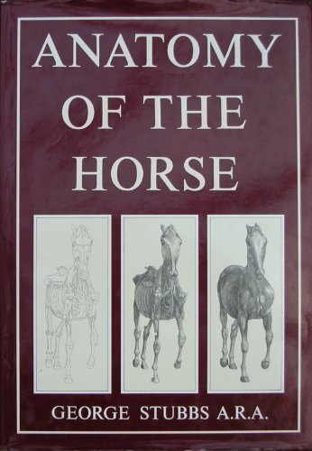 9781851704293: Anatomy of the Horse
