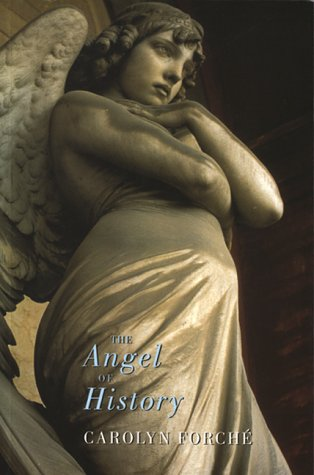9781852243074: The Angel of History