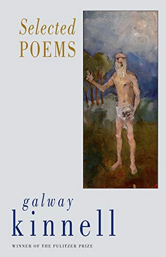 9781852245412: Selected Poems