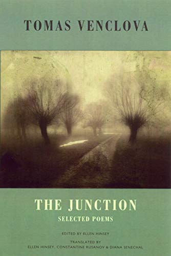 9781852248109: The Junction: Selected Poems