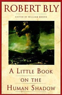 9781852303150: A Little Book on the Human Shadow (Little Books)