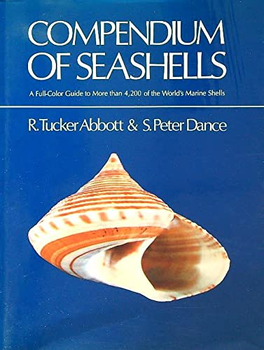 9781852381349: Compendium of Seashells
