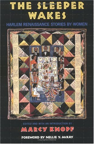 9781852423179: The Sleeper Wakes: Harlem Renaissance Stories by Women