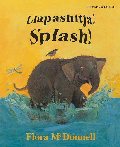 9781852694951: Llapashitja!/Splash! (Albanian Edition)