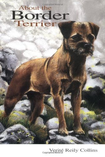 About the Border Terrier.: COLLINS, Verite Reily.