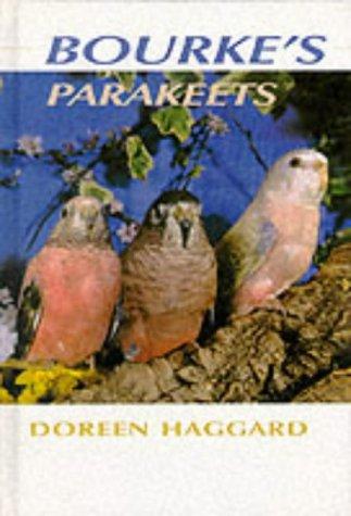 Bourke's Parakeets: Haggard, Doreen