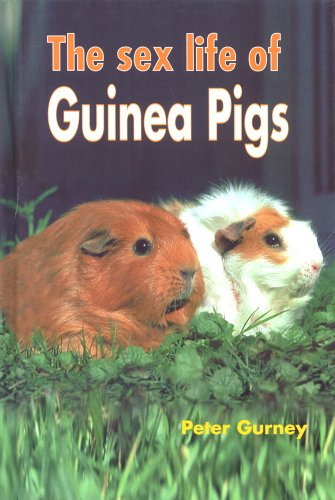 9781852791339: The Sex Life of Guinea Pigs