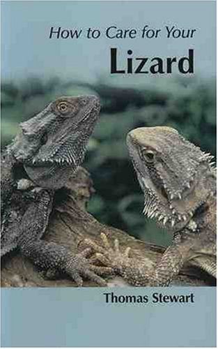 9781852791643: How to Care for Your Lizard (Your first...series)