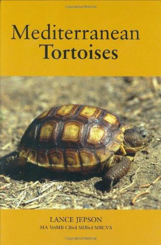 Mediterranean Tortoises: Jepson, Lance