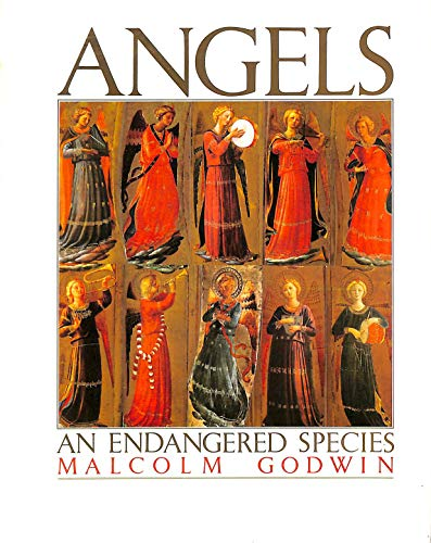 9781852835064: Angels: An Endangered Species