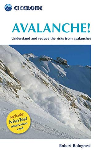 9781852844738: Avalanche: Understand and Reduce the Risks from Avalanches (Cicerone Mini-guides)