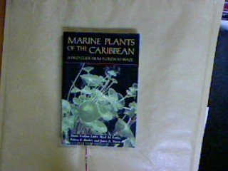 9781853100840: Marine Plants of the Caribbean: A field Guide From Florida To Brazil