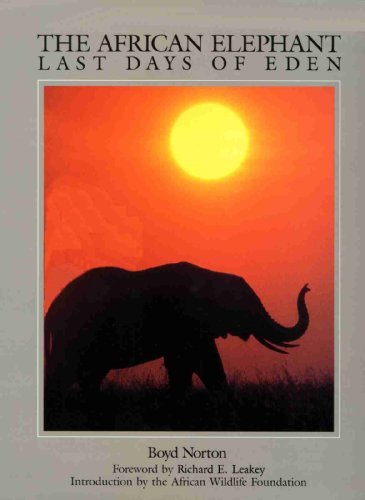 9781853102912: The African Elephant: The Last Days of Eden