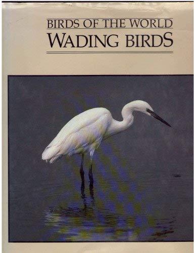 Wading Birds: John P.S. Mackenzie