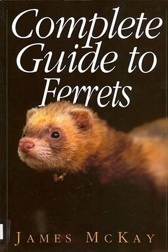 9781853104336: Complete Guide to Ferrets