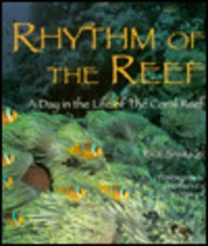 9781853107412: Rhythm of the Reef