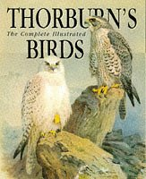 Thorburn's Birds (9781853264924) by Archibald Thorburn