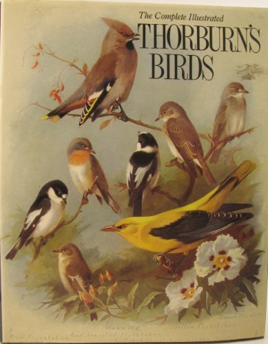 9781853269226: Thorburn's Birds