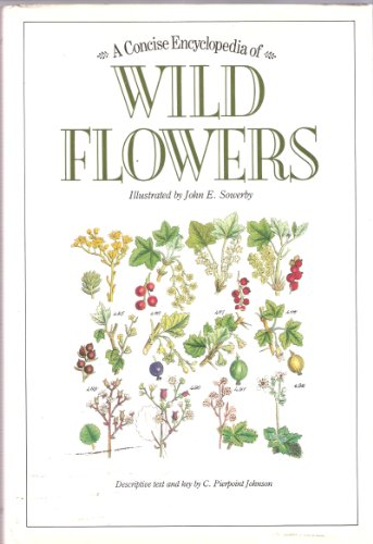 A Concise Enclyclopedia of Wild Flowers: Johnson, C. Pierpoint