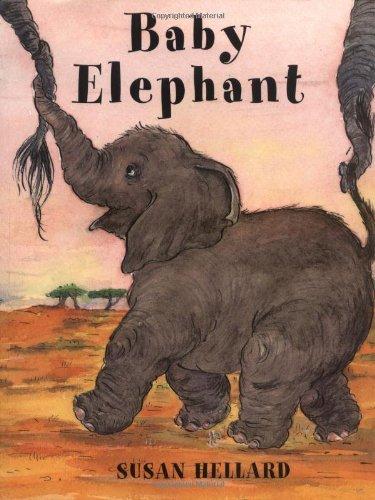 9781853406416: Baby Elephant