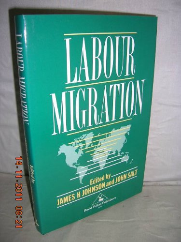 9781853461200: Labour Migration: The Internal Geographical Mobility of Labour in the Developed World