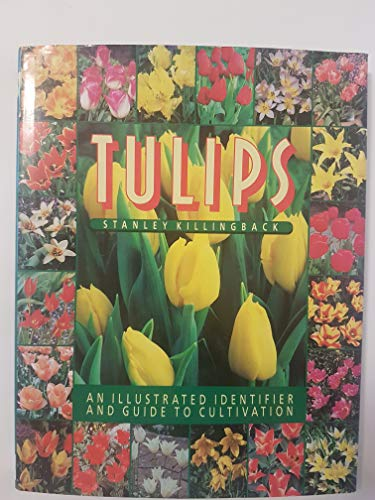 9781853483103: Tulips: An Illustrated Identifier and Guide to Cultivation.