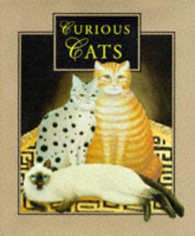 9781853687211: Curious Cats