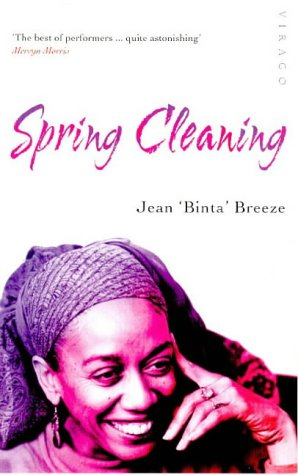 9781853812538: Spring Cleaning