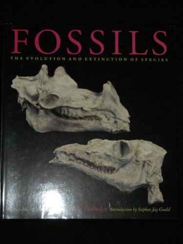Fossils. The Evolution and Extinction of Species