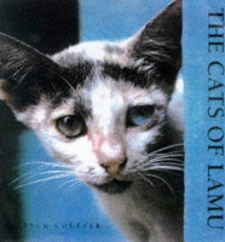 The Cats of Lamu: Couffer, Jack