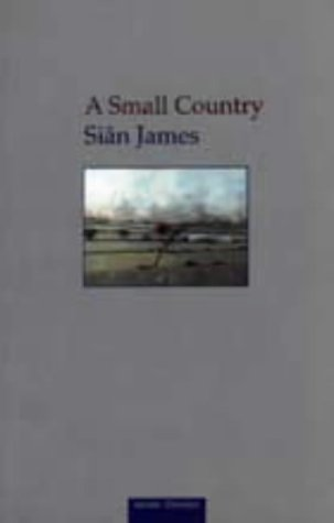 9781854112583: A Small Country (Seren Classics)